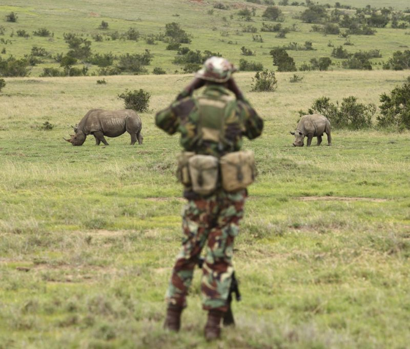 rhino ranger foundation borana conservancy