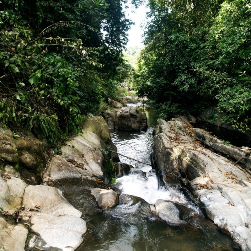 river in khe nuoc trong forest vietnam