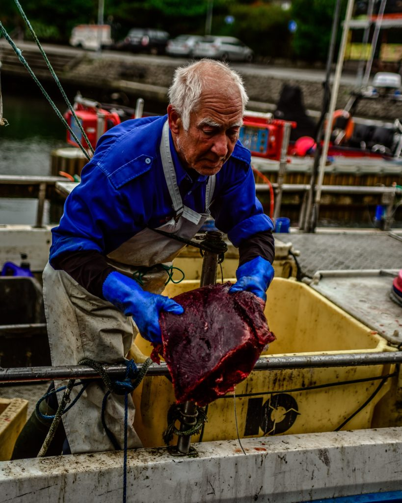 faroe fishing man whale islands meat