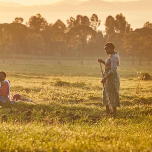rwanda local community volcanoes national park