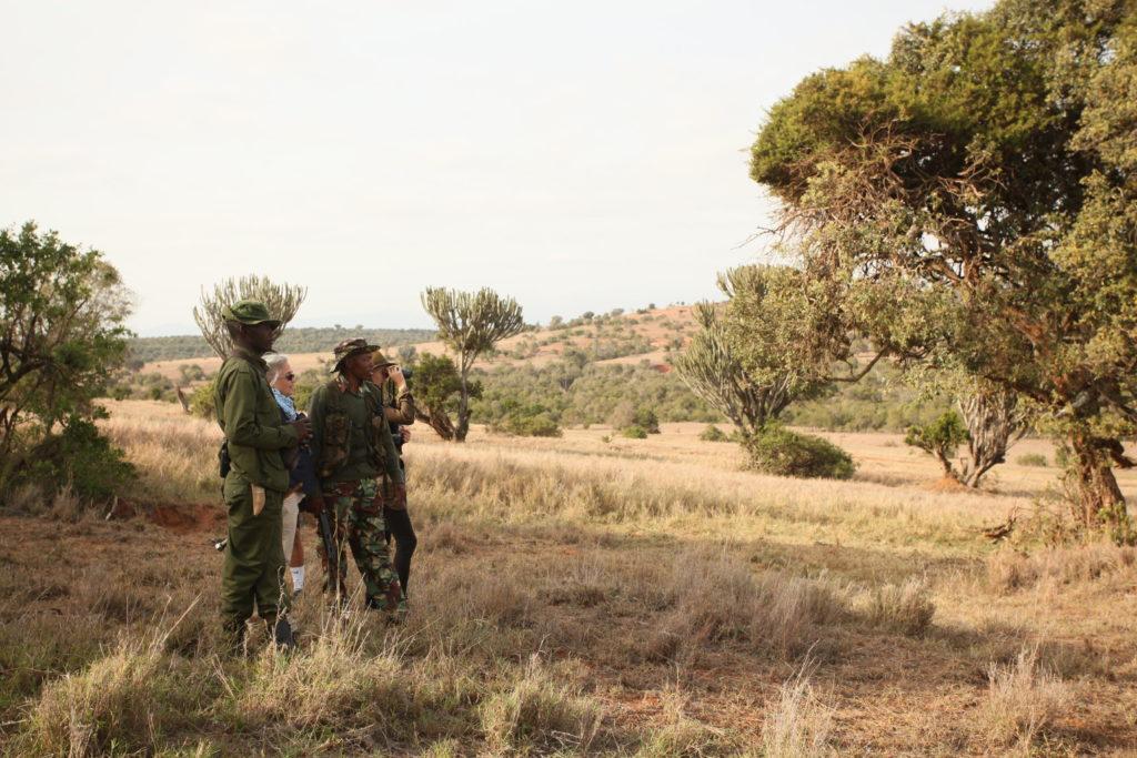 field rangers borana conservancy kenya