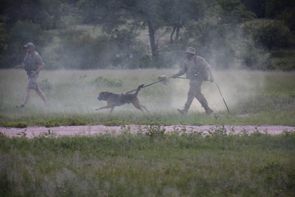ranger training canine unit transfrontier