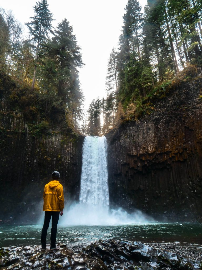 oregon states trees waterfall pine united