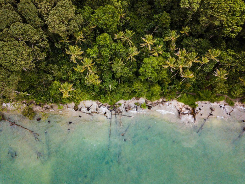 beach jungle costa rica aerial