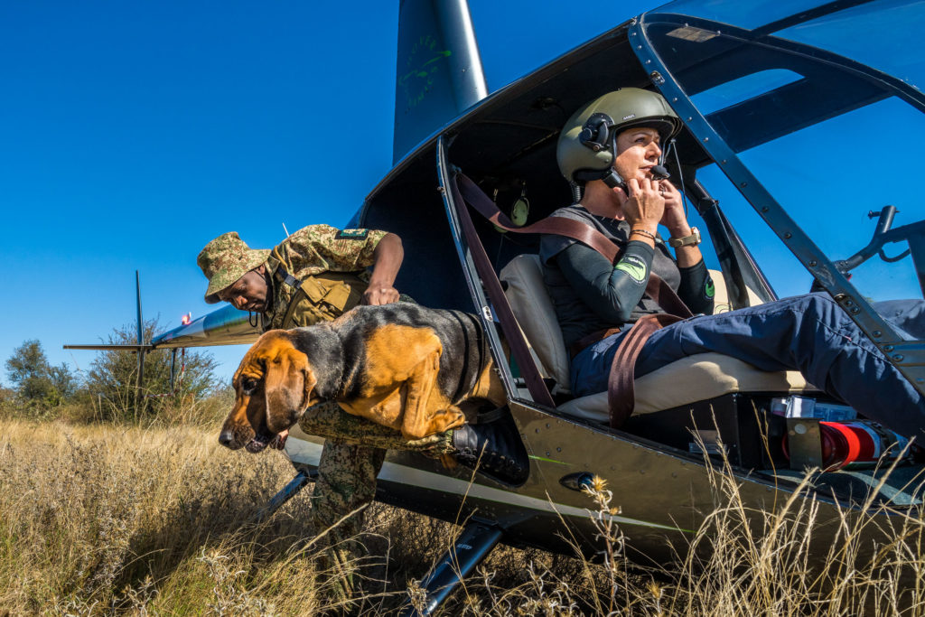 canine unit field ranger helicopter