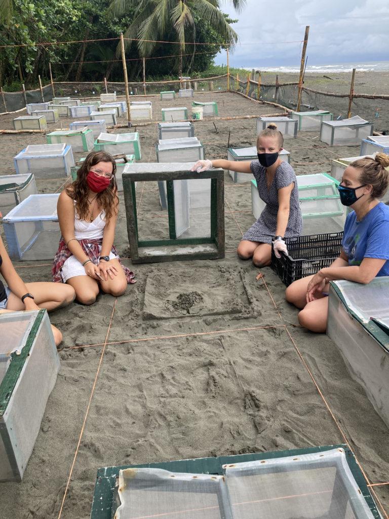 research station sea turtle costa rica